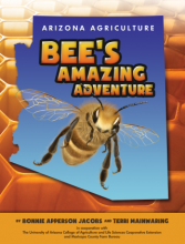Bee's Amazing Adventure