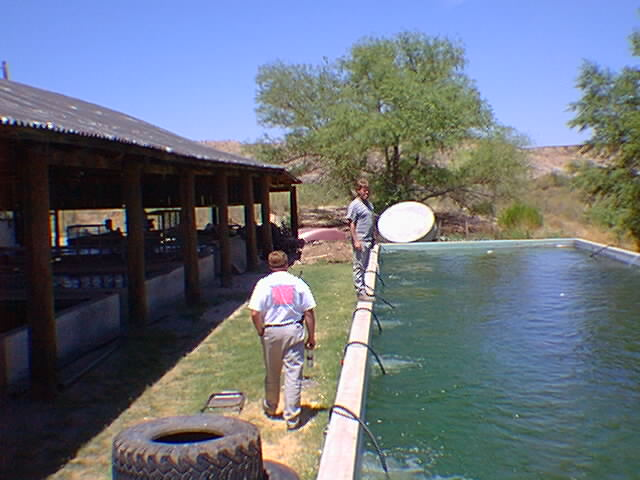 Arizona aquaculture images safford az for Fish farming at home