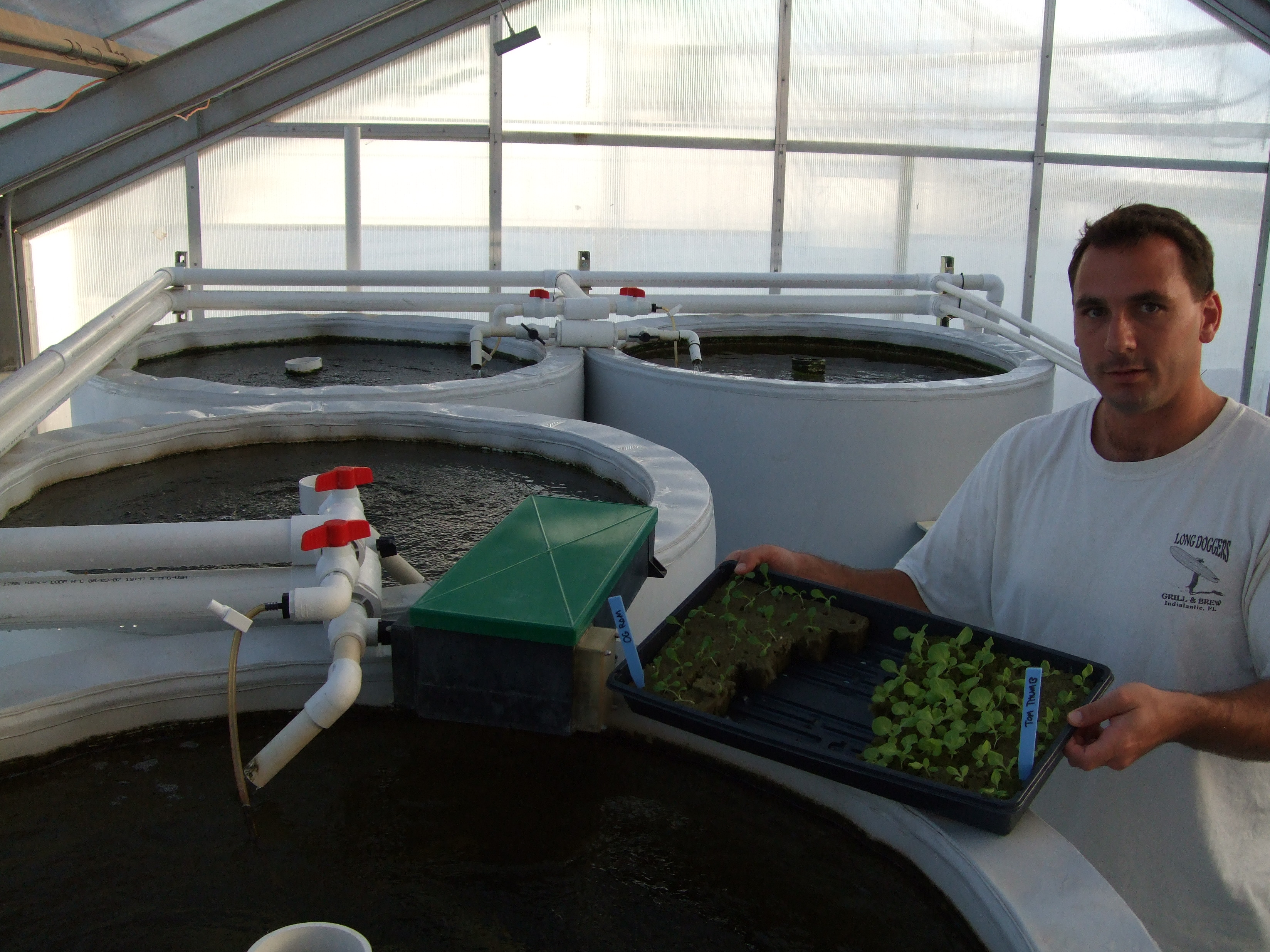 Aquarium aquaponics and portal on pinterest for Arizona aquaponics