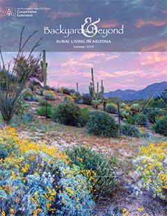 Summer 2016 Cover Of Backyards U0026 Beyond