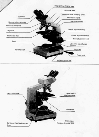 laboratory one introduction to microscopy Microscopy pre-lab activities instructional video: let joelle introduce you to the microscope in this 7 minute video [flash video] virtual.