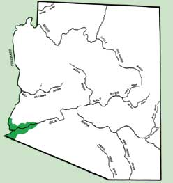 Agricultural Inspections Between Arizona And California Map.Guidelines For Head Lettuce Production In Arizona Acis