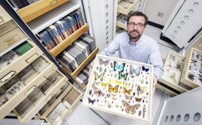 Gene Hall, Collections Manager, with some of the 2M specimens in the UA collection. Photo: Ron Medvescek / AZ Daily Star