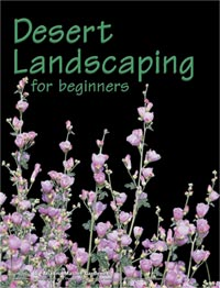buy Desert Landscaping for Beginners