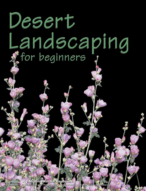Desert Landscaping for Beginners