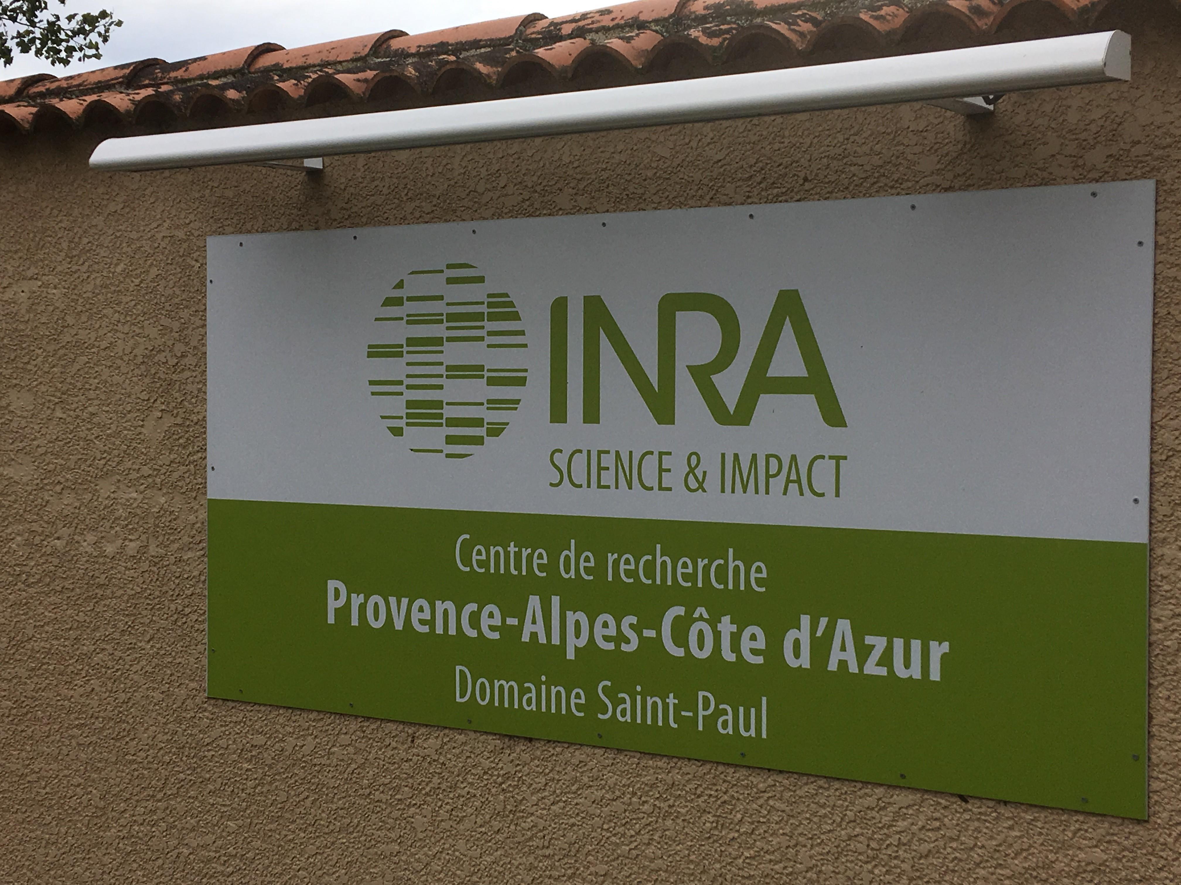 INRA Avignon