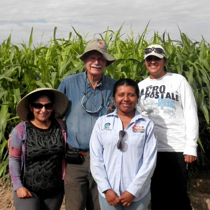 Professor Don Slack of the UA's department of agricultural and biosystems engineering stands in front of the sorghum fields with graduate students Ilse Rojas, Tania Martinez-Cruz and Upasna Chandarana. (Photo courtesy of Don Slack)