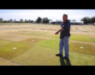 Embedded thumbnail for UA turfgrass specialist has high hopes for greener grass
