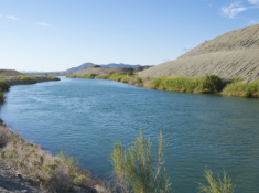 All-American Canal, just west of Yuma, Ariz. (Photo by Lynn Ketchum)