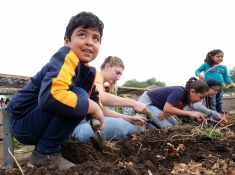 Kids learn to plant and grow different vegetables and fruits. Photo credit: Brian Powell