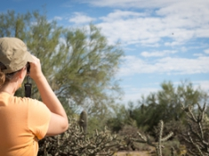 Observers track saguaros, palo verde trees, cactus wrens and hummingbirds at the Mason Audubon Center in Tucson. (Photo: Brian Forbes Powell)