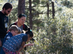 A family observes oak leaf phenology in Arizona. (Photo: Brian Forbes Powell)