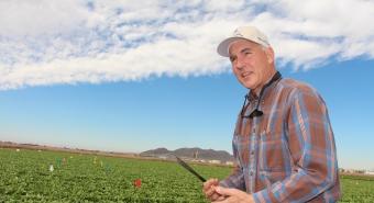 John Palumbo in the field in Yuma.