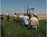 Innovative Workshop Held on Crop Improvement Technologies